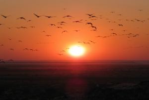 Mount Abu Sunset Images