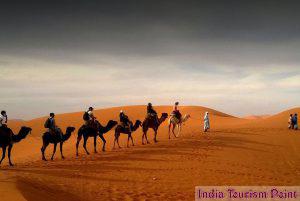 Desert Safari Tourism Still