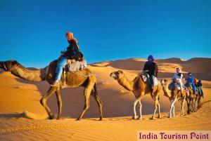 Desert Safari Tourism Stills