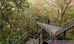 Eco Tourism Images