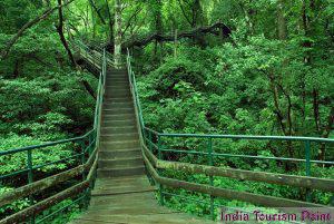 Eco Tourism Stills
