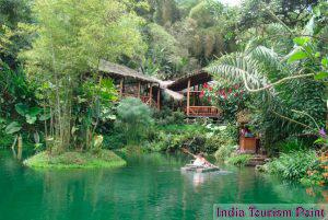 Eco Tourism & Tours