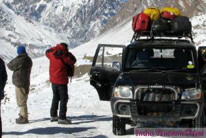 Jeep Safari Tourism Pic