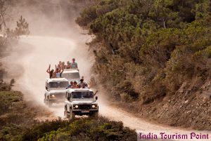 Jeep Safari Tourism Wallpapers