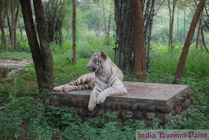 Jharkhand Tourism Photo