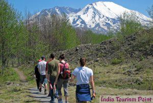 Jungle Tourism Image