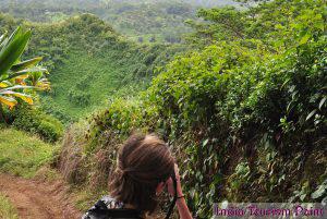 Jungle Tourism Image Gallery
