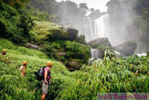 Jungle Tourism Pictures