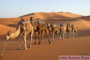 Rajasthan Tour and Tourism Wallpapers